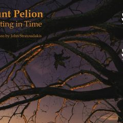 Mount Pelion – Sculpting in Time